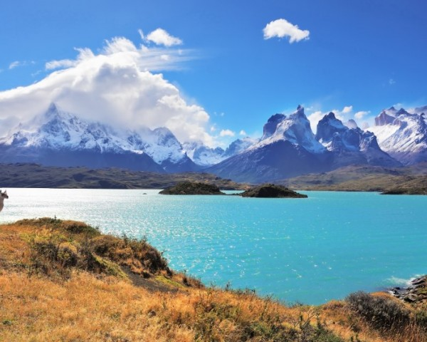 Discover the Best Regions of South America with Say Hueque